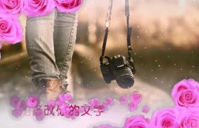 粉色花朵浪漫裝飾閃光粒子點綴婚禮電子相冊會聲會影模板