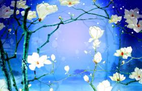 深蓝迷蒙星空玉兰花枝浪漫呈现唯美大气舞台背景视频