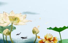 荷塘金魚游玩荷花唯美生長彩繪水墨動態特效視頻