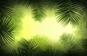 針狀綠葉INS風清新遮罩動態特效視頻素材