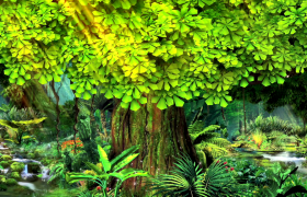 彩繪森林陽光投射樹葉飄零粒子演繹夢幻特效視頻素材