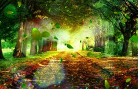 綠蔭小道樹葉飄落彩色粒子洋溢夢幻特效視頻素材