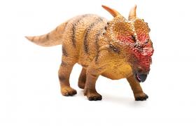 白垩纪北美洲中型角龙阿奇洛龙河神龙C4D恐龙模型