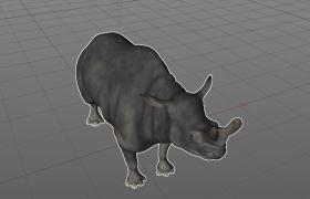 奇蹄目哺育动物北美洲兰布达雷兽C4D灭绝物种动物模型