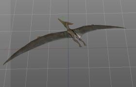 遠古時期最先主動飛行的脊椎動物Pterosauria天空翼龍C4D模型