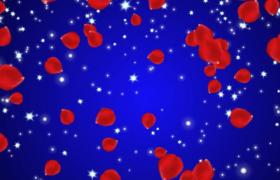 藍色背景紅玫瑰花瓣伴隨星光柔美飄灑婚慶特效視頻素材