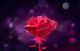 紫色粒子浪漫闪烁3D红玫瑰花束绽放婚庆情人节特效视频