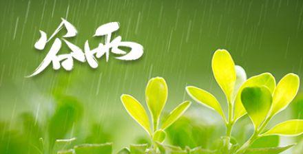 谷雨節氣視頻素材專欄
