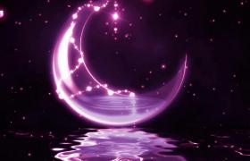 水波粼粼紫色月亮水面漂浮粒子花瓣梦幻演绎LED舞台背景视频