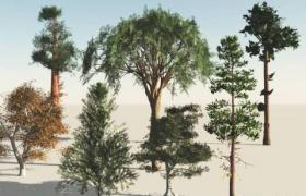 9種常見的荒漠綠植行道樹綠植樹木tree 3D植物素材包合集