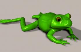 两栖无尾目脊椎动物雨蛙Hylachinensis 3D模型(3ds,max,obj,lwo)