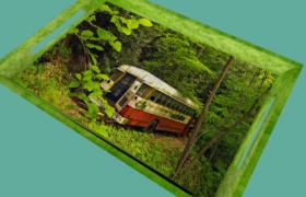 精美照片绿色画款托盘创意日常生活用品C4D模型(obj,fpx,3ds,c4d,dae,stl)