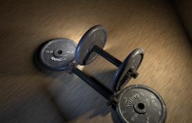 10LB哑铃铁饼健身专业辅助工具C4D模型(含贴图)