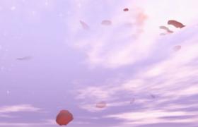 520告白求婚淡紫色云端星光华丽闪耀花瓣柔美飞舞动态特效视频素材