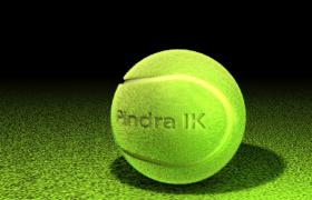澳网网球TENNIS BALL体育用品球类C4D模型(3DS,OBJ,Collada,Cinema 4D,FBX,DXF
