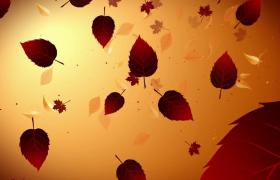 楓葉粒子直面飄零效果凄美回憶風格畢業季動態背景視頻