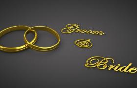 高品质时尚穿戴首饰金婚金戒指C4D模型