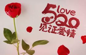 520见证爱情浓情献礼大屏图文切换展示节日营销ae模板