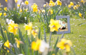 春日和煦戶外田野動態實拍場景AE親子家庭相冊展示模板
