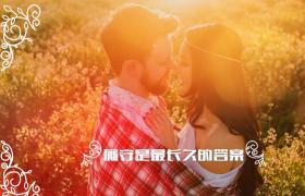 戀愛相冊ED模板_浪漫戀愛婚禮相冊記錄展示轉場花紋延展視頻模板