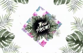 鲜花植物彩绘动态INS风春夏清新元素广告包装ae模板