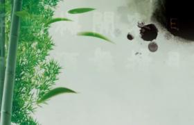 古风舞蹈背景水墨竹林文字梅花荷花芒种背景视频素材