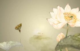 唯美江南水墨荷花动感视觉芒种歌舞演出背景视频素材