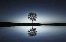 天邊星河璀璨湖水樹木倒影柔美夜景高清視頻