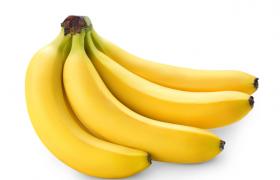 含糖量高的精品黄香蕉食物水果C4D高清渲染模型(c4d,obj,fbx)
