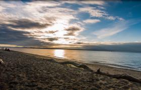 朝陽云彩海灘枯木唯美海景4K實拍視頻