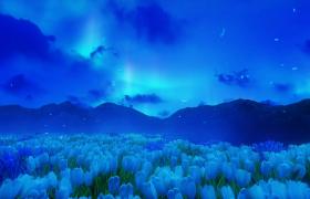 静谧蓝色夜空百合花海动态演绎唯美逼真LED舞台背景视频