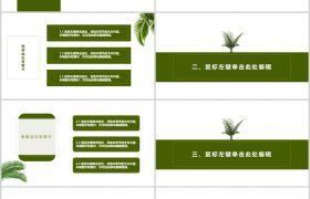 黑白绿色简约框架完整商务通用项目策划方案PPT模板