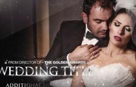大气金色星光粒子特效婚礼图文包装开场短视频优德w88中文版