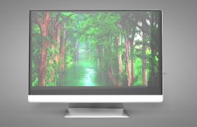 绿色护眼IPS面板广色域显示屏DIY电脑外设C4D模型