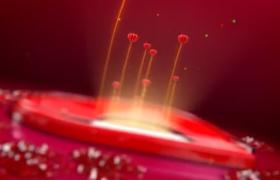 AE模板-红色纸片飞舞爱心拼合创意情人节开场文字动画视频模板