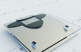 玻璃面板健康减肥家居电子秤3dmax模型(含效果图)