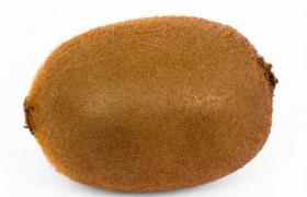 高精度毛刺外观效果新西兰黄金奇异果3D外观模型展示