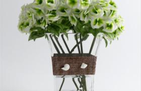 清香綠色插花水產綠植花卉室內裝飾擺件3D效果模型