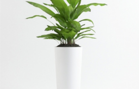精致白色圓筒型辦公室綠植擺件裝飾生活藝術品3D仿真模型