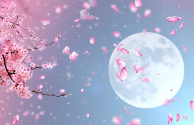 中国风素材-高清唯美花瓣飞舞圆月视觉浪漫风景舞台背景视频素材