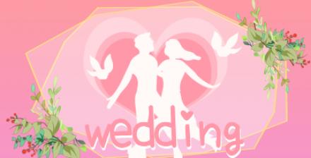 浪漫婚礼视频素材专栏
