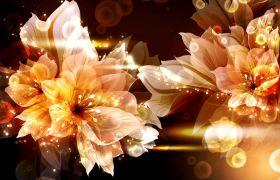 植物素材-唯美动态绽放花朵LED植物背景演出节目视频素材