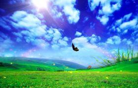 自然風光素材-清新自然草原流動天空草地蝴蝶動態視頻背景素材