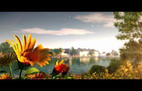 自然風光-唯美自然清新荷花水塘小船花朵視頻背景素材