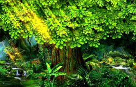 植物素材-绿色童话梦幻森林清新舞台背景视频素材