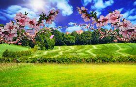 自然風光-清新淡雅桃花盛開藍天草原自然風光舞臺背景