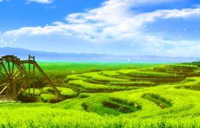 自然風光-動態清新藍天草地水車田野自然風光LED背景視頻