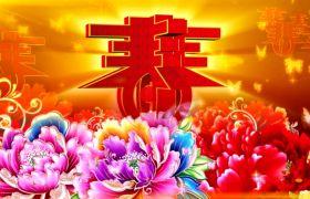 节日素材-喜庆典美春节春暖花开富贵舞台背景视频