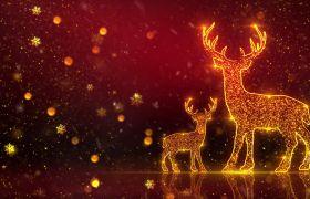 节日素材-绚丽粒子金色麋鹿圣诞元素背景视频素材