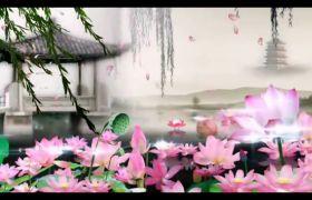 舞台素材-优雅中国风水墨荷花古典晚会背景视频素材